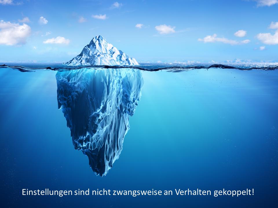 FRITZ - Verhaltensveränderungen - Einstellungen - Eisberg