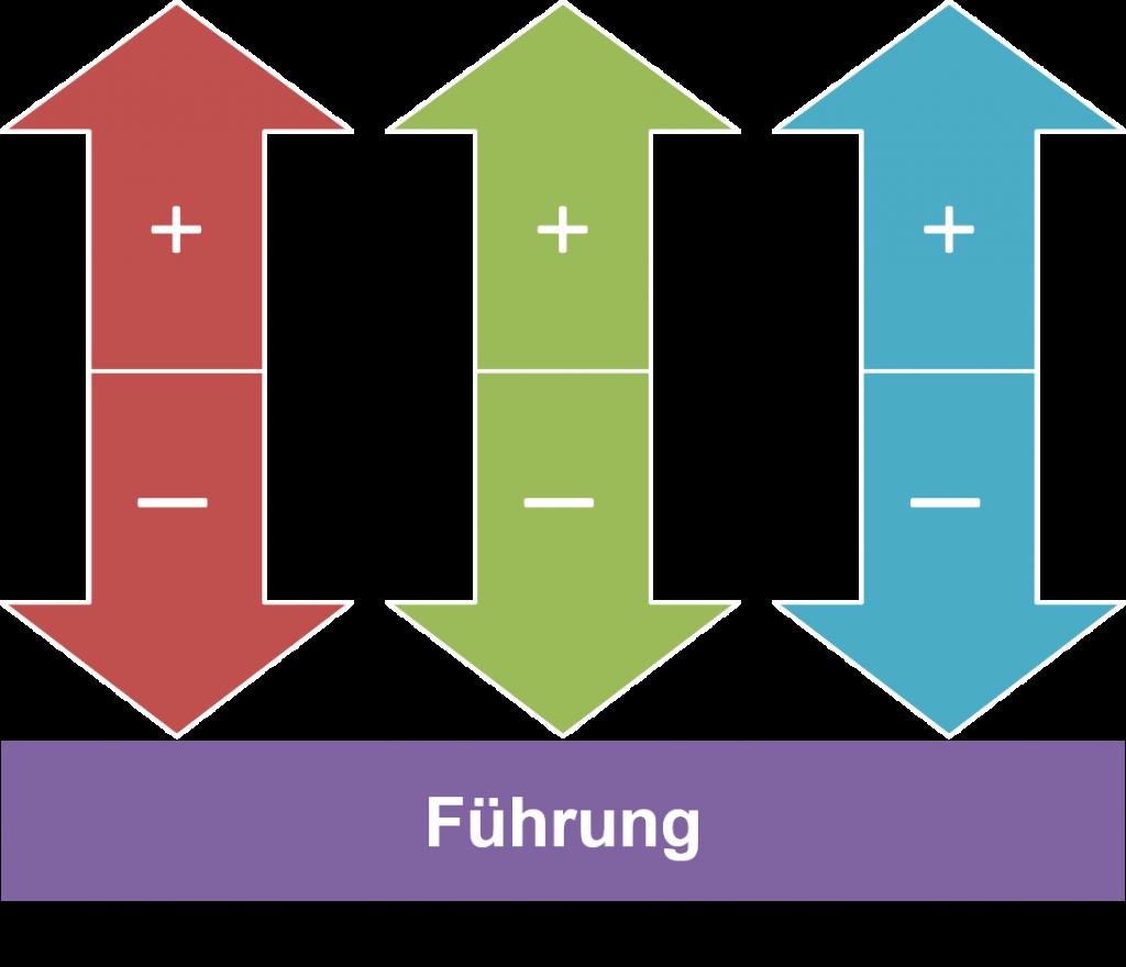FRITZ - Systemische Führungskräfteentwicklung