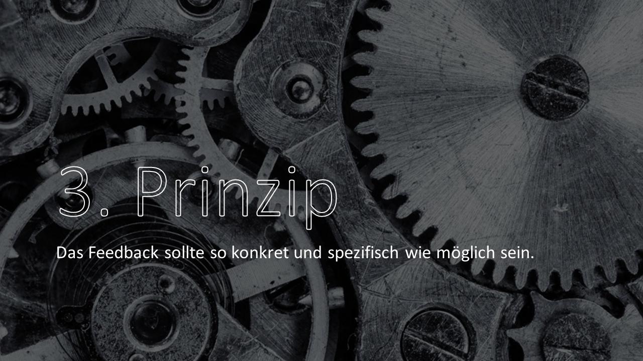 FRITZ - 3. Feedback-Prinzip nach Schein